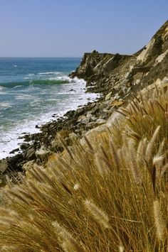 Pacific Coast Highway photography  Pinned by indus® in honor of the indigenous people of North America who have influenced our indigenous medicine and spirituality by virtue of their being a member of a tribe from the Western Region through the Plains including the beginning of time until tomorrow.