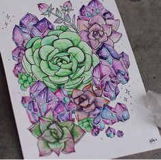 Crystals and succulents