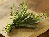 Parsley, Good Food, Herbs, Google, Plants, Image, Herb, Plant, Healthy Food