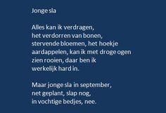 Rutger Kopland - Jonge sla