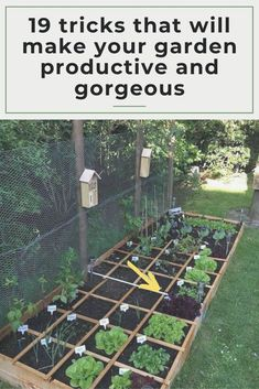 9 creative garden hacks tips that every gardener should know garden ideas gardening ideas gardening for beginners gardening design gardening tools gardening hacks gardening and landscape gardens and gardening ideas gardening tips 940 gardeningtips Backyard Vegetable Gardens, Small Backyard Gardens, Vegetable Garden Design, Small Garden Design, Small Gardens, Backyard Landscaping, Landscaping Ideas, Backyard Ideas, Garden Tools