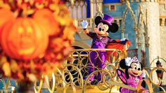 Halloween Entertainment At Walt Disney World Walt Disney World, Disney World Marathon, Disney World Halloween, Disney World Theme Parks, Disney Parks Blog, Disney World Resorts, Disney Vacations, Scary Halloween, Halloween Party