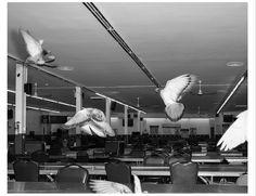 Le futur de la photographie contemporaine vient de Yale | The Creators Project