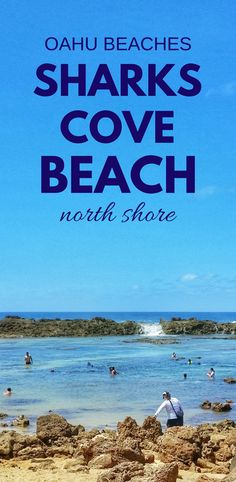For a top snorkeling beach in Oahu, head to the North Shore from Waikiki. Shark's Cove has snorkeling and food trucks, with more activities nearby! Hawaii Surf, Hawaii Vacation, Hawaii Travel, Hawaii Activities, Travel Activities, Cruise Travel, Usa Travel, Destin Beach, Beach Trip