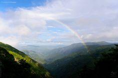 Parque Nacional de Cévennes Um parque excepcional.  O Parque Nacional foi criado oficialmente em 1970.  Nele, vestígios dos povos pré-históricos e antigos foram descobertos.  Hoje em dia, o parque se estende na região das Cévennes e compreende os departamentos da Lozère, do Gard, da Ardèche e do Aveyron.  Ele é diferente por sua organização, único na França : é, por um lado, o único parque natural que se localiza numa montanha mediana e, por outro, ele é habitdo e explorado por residentes…