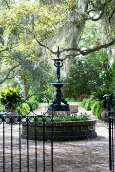 Gardens of South Carolina by Georgianna Lane