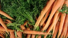 Mrkev obecná Carrots, Vegetables, Food, Essen, Carrot, Vegetable Recipes, Meals, Yemek, Veggies