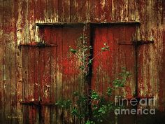 """""""Beautiful Decay"""" ~ © 2016 RC deWinter ~ All Rights Reserved ~ A view of a majestic old barn in Wethersfield, Connecticut."""
