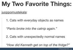 3. Cats with classical or overly sophisticated names. Such as my Othelo 4. Cats with names of other animals! 5. Cats