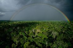 Orage sur la forêt amazonienne. Yann Arthus-Bertrand