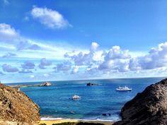 galapagos island - Google Search Galapagos Islands Ecuador, Theory Of Evolution, Animal Species, Archipelago, Darwin, Pacific Ocean, Wildlife, Coast, Google Search
