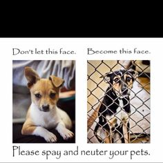 A great message. If you're looking for spay and neuter in Arizona, contact us http://www.azhumane.org/spay-neuter/