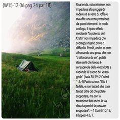 Tratto dalla lettura biblica di Salmi 11-18
