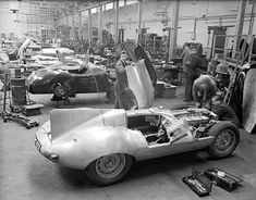 """""""(Jaguar C-Types in background) As an artisit, these Cats were endless inspiration. Sweeping lines, power and agility. But especially those unforgettable body shapes."""" KB Jaguar D-Type, Brown's Lane British Sports Cars, Classic Sports Cars, Best Classic Cars, British Car, Jaguar C Type, Jaguar Sport, Jaguar Cars, Jaguar Xk, Le Mans"""
