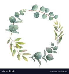 Ideas For Flowers Wreath Illustration Free Wreath Watercolor, Watercolor Cards, Adobe Illustrator, Cotton Wreath, Year Round Wreath, Eucalyptus Leaves, Art Graphique, Free Vector Art, Vector Vector