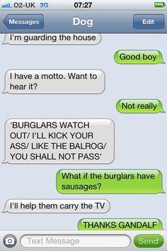 Lotr dog funny dog texts, hilarious texts, funny gifs, humor texts, funny j Funny Dog Texts, Dog Quotes Funny, Hilarious Texts, Humor Texts, Funny Gifs, Autocorrect Funny, Freaking Hilarious, 9gag Funny, Dog Memes