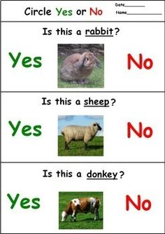 Farm Animals Yes No Questions for Speech Therapy Language Arts Worksheets, Animal Worksheets, Kindergarten Language Arts, Language Activities, Toddler Learning Activities, Animal Activities, Speech Therapy Activities, Indoor Activities, Fun Learning