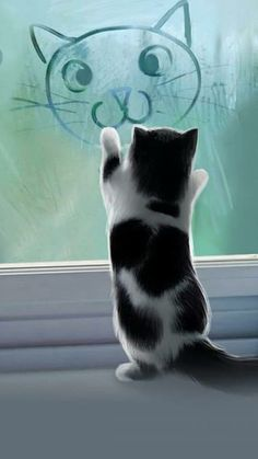 Mobile Cat Wallpapers – Android, iPhone, Smartphone HD Wallpapers – Purrfect Love – Animal Wallpaper And iphone Animals And Pets, Baby Animals, Funny Animals, Cute Animals, Pretty Cats, Beautiful Cats, Animals Beautiful, Kittens Cutest, Cats And Kittens