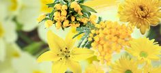 #yellow #inspiration #flowers #fashion #lifestlye #mood #trend #photography #collage #moodboard #style #romantic #spring