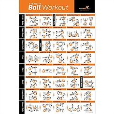 """Amazon.com: Exercise Ball Poster Laminated - Total Body Workout - Personal Trainer Fitness Program - Swiss, Yoga, Balance & Stability Ball Home Gym Poster - Tone Your Core, Abs, Legs Gluts & Upper Body - 20""""x30"""": Sports & Outdoors"""