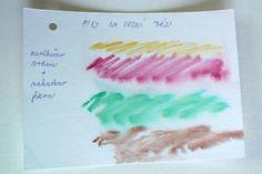 sedma - watercoloring
