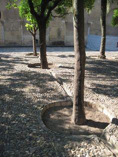 Moschea, Cordoba, metodo di irrigazione.