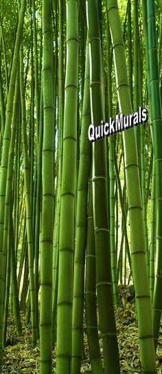 Bamboo Grove Door Mural