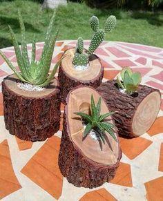 ¡Me encantan estas suculentas macetas de ramas! Diy Wooden Planters, Log Planter, Wooden Diy, Planter Ideas, Tree Planters, Cacti And Succulents, Planting Succulents, Cactus Plants, Cacti Garden