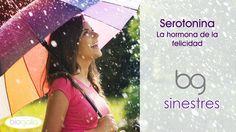 #Serotonina: la hormona de la #felicidad
