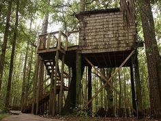 If you're traveling through the American South, don't miss your chance to sleep in the trees at Brunswick, Georgia's Hostel in the Forest!
