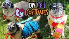 Pugdemonium: 3 Cute DIY Pet Costumes