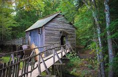 Go to Cade s Cove In The Nice Smoky Mountains  Geez Gwen  Cades Cove Mill Go to Cade  s Cove and drive the historic loop by historical past Wildlife in every single place and views for days Gatlinburg Pigeon Forge space Tennessee travel traveltennessee tennessee