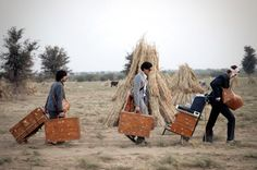 #darjeeling limited luggage