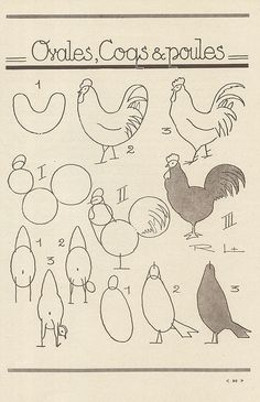 Drawing roosters n hens. les animaux 46 by pilllpat (agence eureka), via Flickr