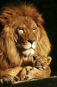 Fatherly LOVE....
