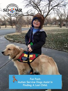 #DidYouKnow that SDWR can train #AutismServiceDogs to perform search and…