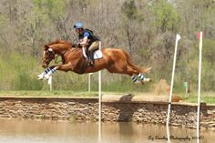 Eventing Nation: How NOT to Jump a Drop into Water « HORSE NATION (April 13, 2014)