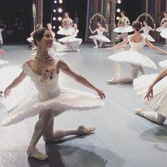 "lasylphidedubolchoi: "" Bolshoi's Le Corsaire Photo via Nina Biryukova's IG (? Ballet Tutu, Ballet Dancers, Ballerinas, Dance Photos, Dance Pictures, Ballet Costumes, Dance Costumes, La Bayadere, Ballet Photography"
