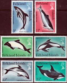 Falkland Islands 1980 Dolphins and Porpoise Set Fine Mint SG 371 5 Scott 298 303 Other Animal and Fish Stamps HERE