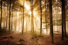 O tom, ako môžeš nájsť Boha. Tu a teraz. Môže človek nadviazať osobný vzťah s Bohom? Má čakať na blesk z jasného neba? Začať vykonávať nejaké mysteriózne náboženské obrady? Stať sa lepším človekom …