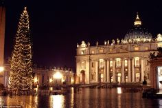 The Vatican Christmas Tree, also called the Saint Peter's Christmas Tree, is the decorated tradition that is erected annually in the square
