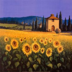 Sunflower Posters at AllPosters.com