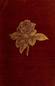 'The Book of the Rose.' By A. Foster-Melliar. Published 1905.