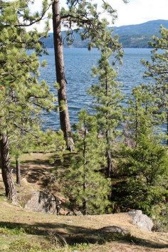Tubbs Hill Nature Park, trails, caves, beaches and more in Coeur d'Alene, Idaho.