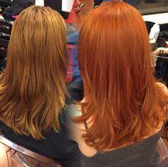 """Quem aqui é apaixonado por ruivos? Nós somos <3 e o @jeanphh , do Circus Hair também é. Dá uma olhada nesse ruivo ma-ra-vi-lho-so que ele produziu e compartilhou com a gente: """"aqui vemos o resultado do 8-77 sozinho. Ele faz milagres e deixa aquele tom mais laranjinha que todas as clientes sempre pedem. Claro que isso já partindo de um cabelo desbotado. É praticamente mágica como IGORA consegue igualar o tom com essa tecnologia!"""""""