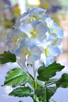 Pasta di gomma Ortensia, spolverato con nebbia Mauve e Mid blu.  Uno dei miei fiori preferiti.