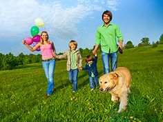 5 ways to make the walk more interesting  Read more: http://www.cesarsway.com/dog-training/dog-walk/5-ways-to-make-the-walk-more-interesting | Cesar Millan