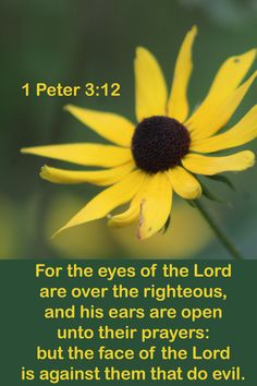 Scriptures, Verses, Quick View Bible, Bible Qoutes, Because He Lives, Reformed Theology, Positive Outlook, 1 Peter, Philippians 4