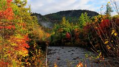 Autumn River Background Free Download i