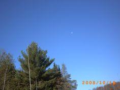 Fall Sky in Arden